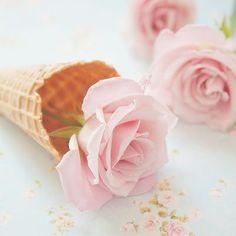 Pink rosettes à la cone