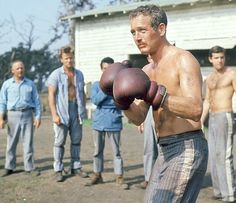 paul newman - cool hand luke - love the prison pants Paul Newman Joanne Woodward, Cool Hand Luke, Cool Captions, Burt Reynolds, Movie Lines, Tough Guy, Great Movies, Back In The Day, Old Hollywood