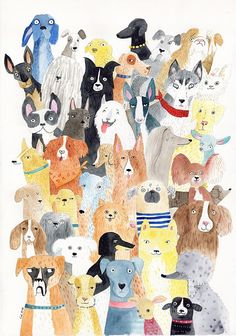 Dog print - lots of dog breed print - Story Illustration Ideas - Chien Dog Illustration, Watercolor Illustration, Watercolor Cat, Dog Art, Dog Love, Dachshund, Cute Dogs, Big Dogs, Small Dogs