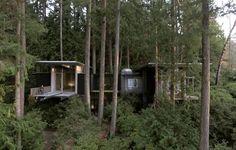 In Residence: Jim Olson