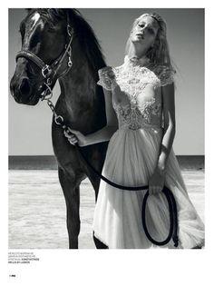 Horses / fashion