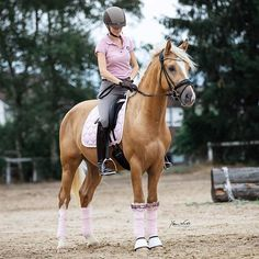 15 Fascinating Facts About Horses Equestrian Boots, Equestrian Outfits, Equestrian Style, Cute Horses, Pretty Horses, Beautiful Horses, Palomino, Horse Facts, Riding Lessons