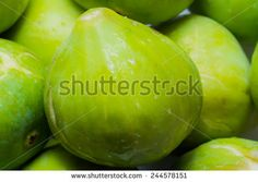 closeup of a green and fresh fig - stock photo