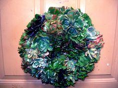 8 Inch Living Wreath.