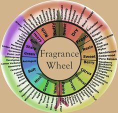 Fragrance wheel at Jetaime Perfumery and DIY peerfume workshop in singapore