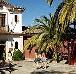Vendemia in Santa Cruz