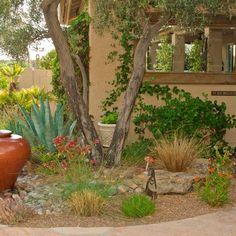 Arizona · Courtyard · Desert Landscape Design Ideas, Pictures, Remodel and Decor