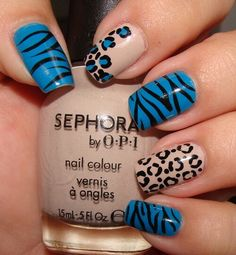 Zebra and cheetah on blue and beige nsils.
