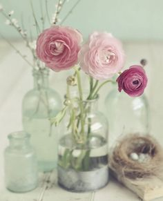 Vintage style photography: Pastel pink and blue roses - Blooming Bottles by Mandy Lynne Kitsch, Vase Transparent, Black Vase, Blue Vases, Gold Vases, Vase Design, Paper Vase, Bottle Wall, Bloom