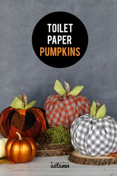 The cute plaid flannel pumpkins are made with toilet paper rolls! Easy toilet paper pumpkins get an update with cute plaid flannel. How to make simple fabric pumpkins using toilet paper rolls. Table Halloween, Halloween Crafts, Holiday Crafts, Thanksgiving Crafts, Halloween Makeup, Halloween Bottles, Halloween Costumes, Halloween Sewing, Thanksgiving Decorations