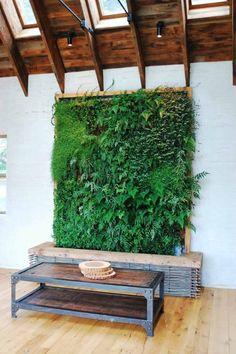 superbe jardin vertical à l'intérieur