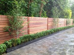 Image result for privacy fence along driveway