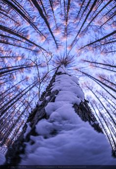"gyclli: "" up to sky by Simon Sun / 500px """