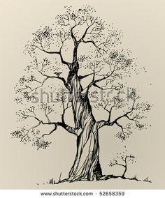 Tree, Vector Illustration - 52658359 : Shutterstock