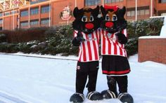 Samson and Delilah SAFC Sunderland Afc, Golden Age, Black Cats, Fictional Characters, Fantasy Characters