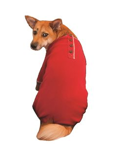 Fashion Pet Outdoor Dog Warm and Toasty Pajamas, XX-Small, Red -- Unbelievable dog item right here! : dog clothes