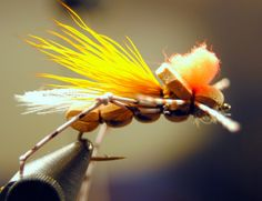Tan Hoppers are a great choice for flyfishing the Upper Clark Fork in Missoula, MT. Experience more fly fishing nuggest at http://www.makeitmissoula.com/things-to-do/recreation/fishing/fishing-montanas-clark-fork-river/