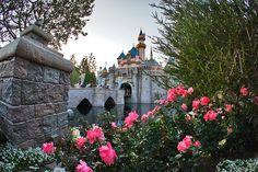 Magic Kingdom Castle, Disney Addict, Sidewalk, Mansions, House Styles, Decor, Mansion Houses, Dekoration, Decoration