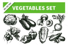 Check out Hand Drawn Sketch Vegetables Set 2 by Elena Pimonova on Creative Market
