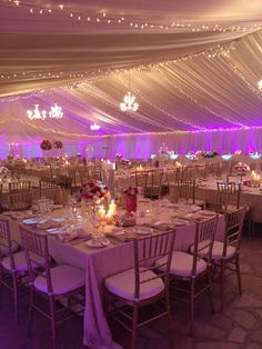 Wedding zimbabwe by tangerine co tangerine co designs pinterest tent by rooneys zimbabwe junglespirit Choice Image