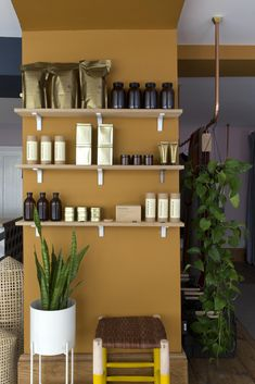We have used a 4 colour palette instore at Caro. This is inspired Middle Buff by Little Greene Wall Colors, House Colors, Paint Colours, Colonial Bedroom, Little Greene Paint, Living Room Paint, House In The Woods, Colour Schemes, Bedroom Colors