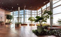Plants, Warm Color Palettes, Architectural Firm, Plant, Planets