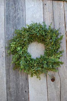 I adore boxwood wreaths.