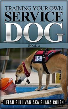 Training Your Own Service Dog Book 2: Training Psychiatric Service Dogs - PTSD, Anxiety Disorders, and Depression by Lelah Sullivan http://www.amazon.com/dp/B015RV08J4/ref=cm_sw_r_pi_dp_IExPwb1RXT5FR