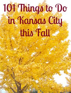 Things to do in Kansas City this Fall