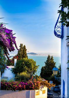 Sidi Bou Said, Tunisia Sidi Bou Said, The Beautiful Country, Beautiful World, Beautiful Places, Tourist Places, Places To Travel, Places To Visit, Carthage Tunisia, Tropical Pool Landscaping
