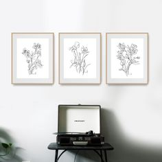Black And White Flowers, Black And White Wall Art, Flower Artwork, Flower Prints, Botanical Wall Art, Mid Century Art, Gold Art, Printable Art, How To Draw Hands