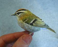 Realistic Paper Models Of Birds