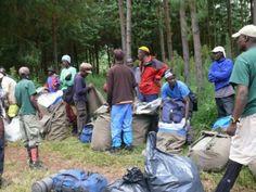Climbing Mount Kilimanjaro, Tanzania: Porters, Mount Kilimanjaro