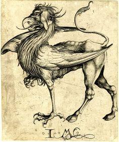Martin Schongauer - The Griffin, etching, 15th century