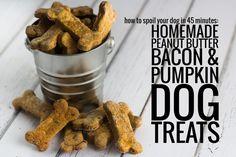 Pumpkin and Bacon Doggy Treats.... recipe