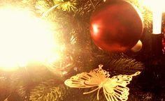 Wenn Weihnachten naht Wenn Weihnachten naht, erwachen neben der Vorfreude auch die, das ganze Jahr gut verborgenen sentimentalen Gefühle. Wenn wir bei der Merci-Werbung im Fernsehen plötzlich Träne...