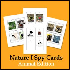 Printable nature I Spy Cards--animal edition from @SpellOutloud.  this is so great!  print on cardstock, laminate, and place on a key ring to bring on our walks.