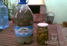 Kovászos uborka télire - tartósítószer nélkül | NOSALTY