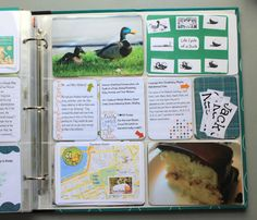 Make Way For Ducklings {FI♥AR}-- Delightful Learning