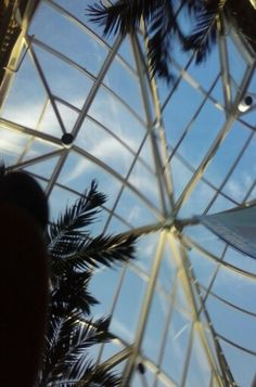 Accidental pic of the sky light in the mall