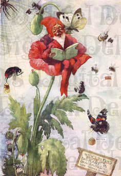 Perched in a Flower. GNOME VINTAGE Illustration. Fairy Digital Download. One of Our Bargain 1.25 Images!