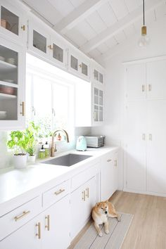 Gorgeous white kitchen space + the cutest pup: Photography : Jen Ha Read More on SMP: http://www.stylemepretty.com/living/2016/05/12/how-to-make-a-1950s-kitchen-remodel-feel-like-a-total-chefs-paradise/