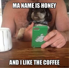 When your dog is a coffee adict