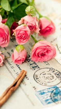 Pink roses ★ Find more vintage wallpapers for your #iPhone + #Android…