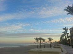 Alicante  2014