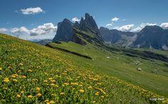le Odle dal Seceda - Dolomiti - Val Gardena
