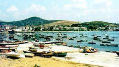 Pendik, 1974