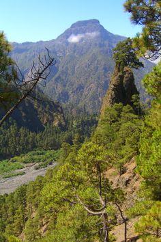 La Palma  in der Caldera de Taburiente - Playa de Taburiente - Dos Aguas & Barranco de las Angustias fotografiert 07-2010 von E. Bosbach