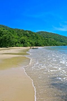 Cape Tribulation Beach in Queensland, Australia, one of the most beautiful places I've ever been.