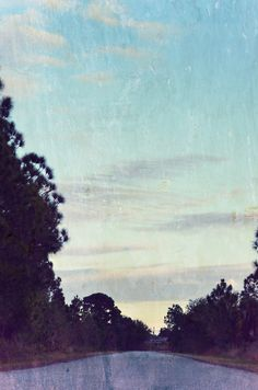 love this pic    http://www.purearganoil.net/what-is-argan-oil/